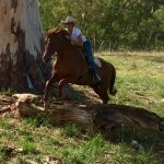 Riding Demands Focus - Horse Riding Is The Best Therapy