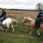 Riding Teaches You Emotional Control - Horse Riding Is The Best Therapy