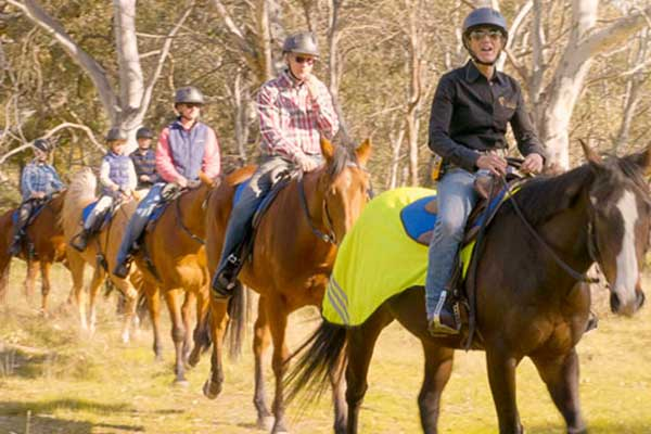 Book Horse Riding Tours